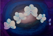 """Orchids"" acrylic painting on canvas by Marjorie Henderson. SOLD-in private collection."