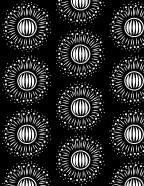 Black_Sunburst_Pattern
